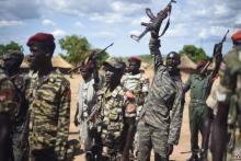 South Sudan militias in the Wau State