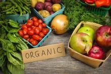 Sample organic foods